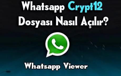 crypt dosyası açma
